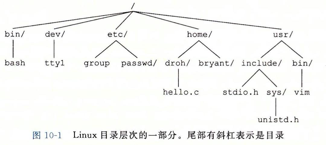 Linux 目录层次结构
